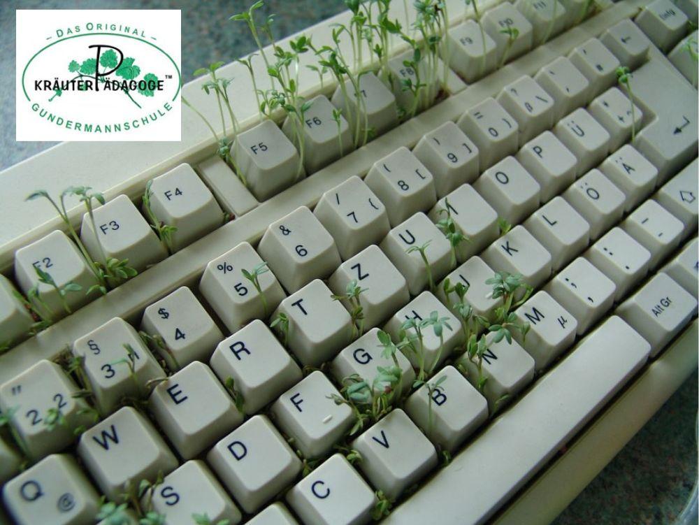 KP online Tastatur