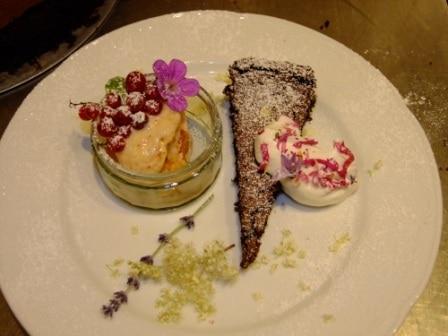 Dessert Rose Pfirsich