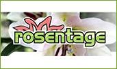Rosentage Bad Tölz